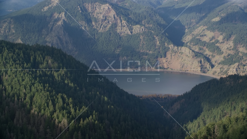 Forest on the Oregon bank of the Columbia River Gorge, Hood River Aerial Stock Photo AX154_152.0000335F | Axiom Images