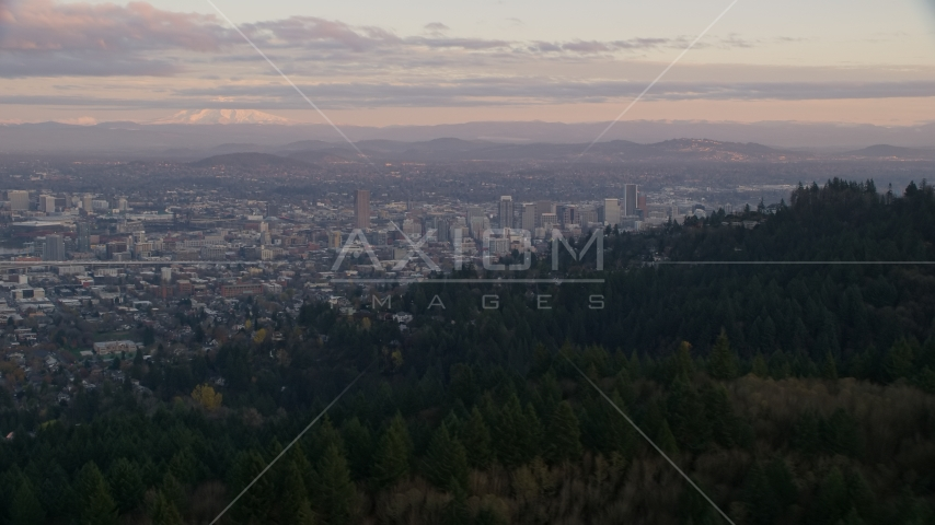 Mount Hood and Downtown Portland at sunset, seen from evergreen forest and hills in Northwest Portland, Oregon Aerial Stock Photos | AX155_140.0000337F