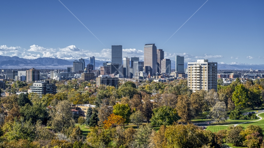The city skyline seen from a park with tall trees, Downtown Denver, Colorado Aerial Stock Photos | DXP001_000156
