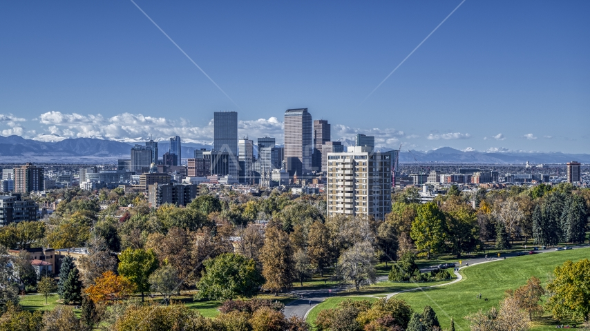 The city's skyline viewed from a park with tall trees, Downtown Denver, Colorado Aerial Stock Photos | DXP001_000157