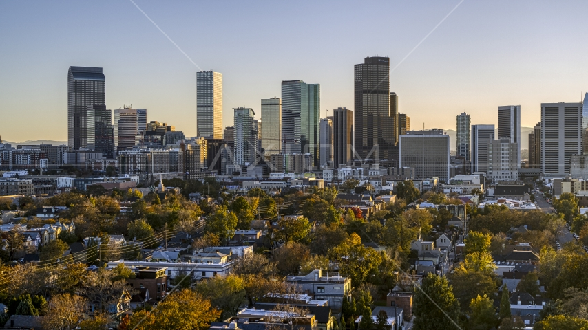 City's skyline seen from tree-lined residential neighborhood at sunset, Downtown Denver, Colorado Aerial Stock Photos | DXP001_000180