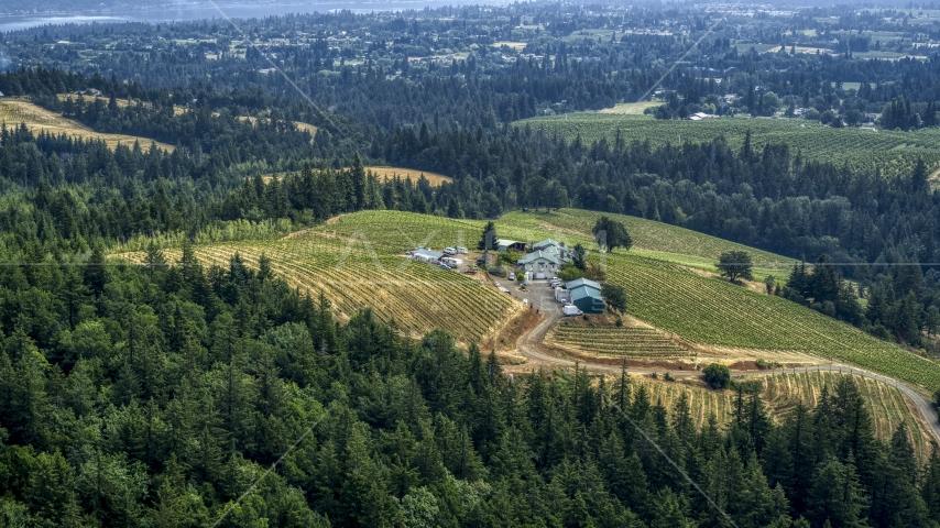 Phelps Creek Vineyards on a hilltop, Hood River, Oregon Aerial Stock Photos | DXP001_016_0012