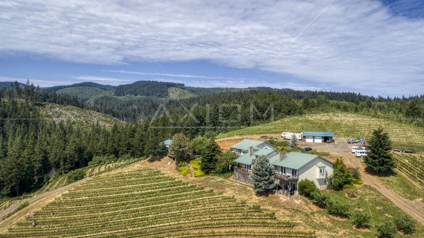 Hilltop buildings and grapevines at Phelps Creek Vineyards in Hood River, Oregon Aerial Stock Photos | DXP001_017_0003