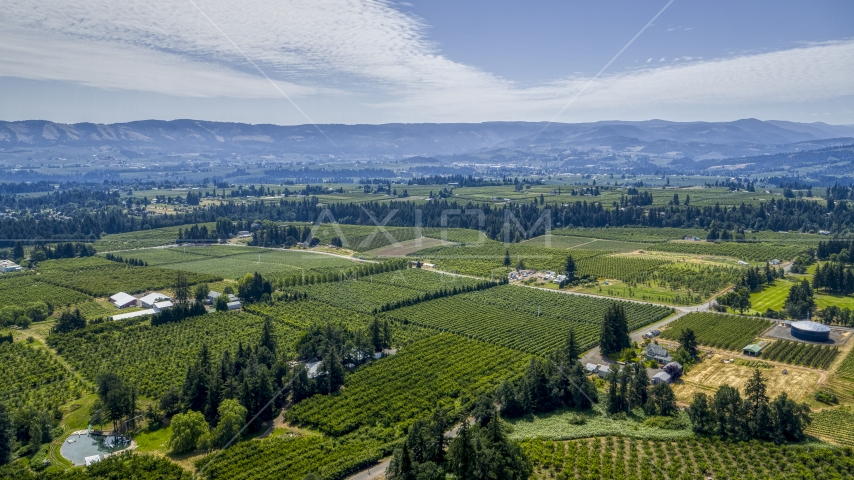 A view of orchards in Hood River, Oregon Aerial Stock Photos | DXP001_017_0022