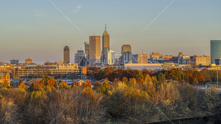 The city's skyline at sunset, seen from trees, Downtown Indianapolis, Indiana Aerial Stock Photos | DXP001_092_0010