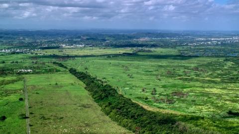Grassland Aerial Stock Photos Axiom Images 2 Photos