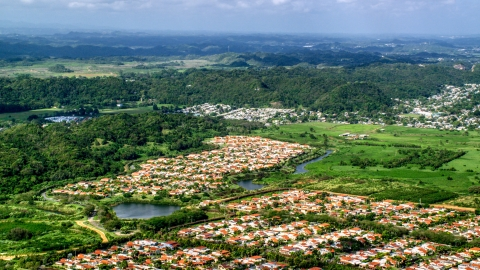 AX101_033.0000283F - Aerial stock photo of Rural homes among trees and grassy areas, Dorado, Puerto Rico