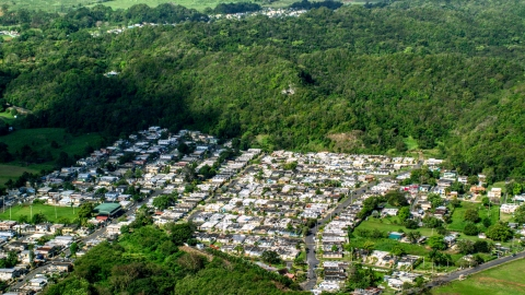 AX101_035.0000000F - Aerial stock photo of Residential neighborhoods and forest, Dorado, Puerto Rico