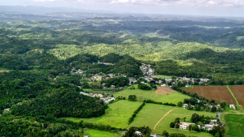 AX101_037.0000000F - Aerial stock photo of Rural homes and farmland, Vega Alta, Puerto Rico