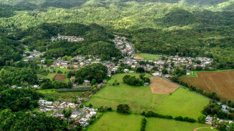 AX101_037.0000201F - Aerial stock photo of Rural homes and farm fields in Vega Alta, Puerto Rico