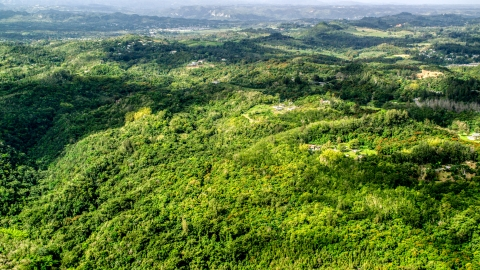 AX101_040.0000217F - Aerial stock photo of Tree covered hills with rural homes in Vega Baja, Puerto Rico