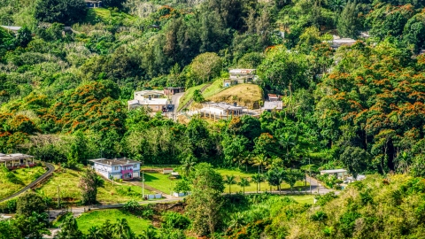 AX101_042.0000000F - Aerial stock photo of Tree covered hills with rural homes, Vega Baja, Puerto Rico