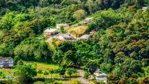 AX101_042.0000199F - Aerial stock photo of Rural homes by tree-covered hills in Vega Baja, Puerto Rico