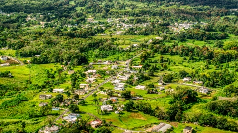 AX101_043.0000000F - Aerial stock photo of Rural neighborhood with lush green grass and trees, Vega Baja, Puerto Rico