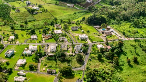 AX101_043.0000368F - Aerial stock photo of Rural neighborhood with lush green grass and trees, Vega Baja, Puerto Rico