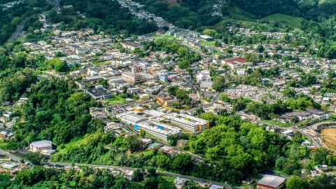 AX101_047.0000000F - Aerial stock photo of Town surrounded by trees, Ciales, Puerto Rico