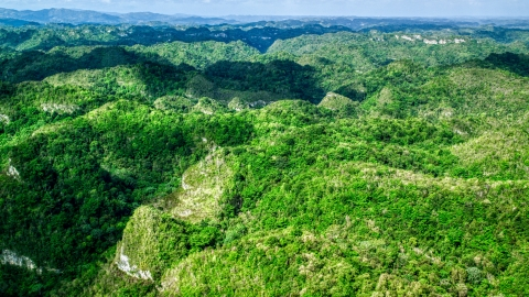 AX101_049.0000149F - Aerial stock photo of Mountains covered in jungle in the Karst Forest, Puerto Rico