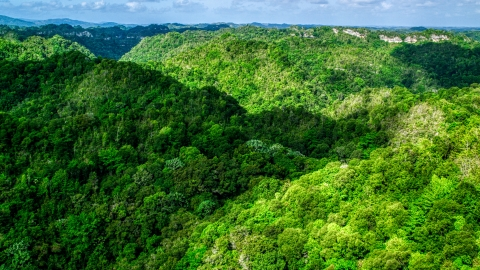 AX101_052.0000197F - Aerial stock photo of Mountains and jungle of the Karst Forest, Puerto Rico