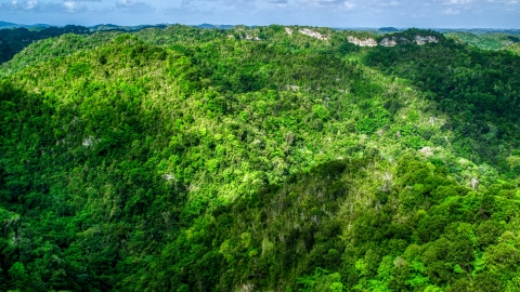 AX101_053.0000150F - Aerial stock photo of Mountains and jungle in the Karst Forest, Puerto Rico