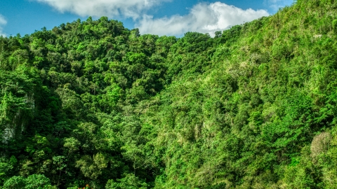 AX101_058.0000069F - Aerial stock photo of Mountain covered in jungle in the Karst Forest, Puerto Rico