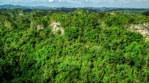 AX101_062.0000303F - Aerial stock photo of Rocky slope of lush green forests and mountains, Karst Forest, Puerto Rico
