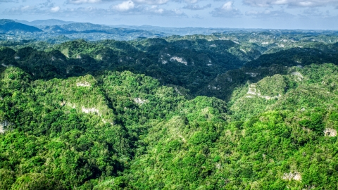 AX101_063.0000000F - Aerial stock photo of Thick jungle and limestone cliffs in the Karst Forest, Puerto Rico