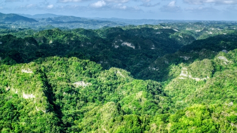 AX101_063.0000152F - Aerial stock photo of Jungle growth on the limestone cliffs of the karst mountains in the Karst Forest, Puerto Rico