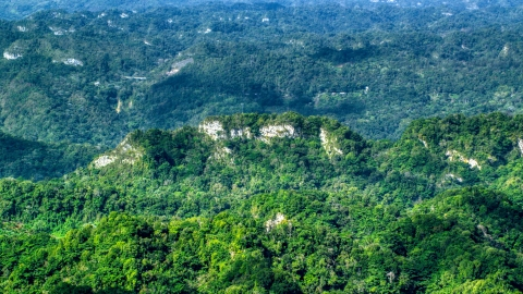 AX101_069.0000000F - Aerial stock photo of Limestone cliffs with lush green jungle growth in the Karst Forest, Puerto Rico