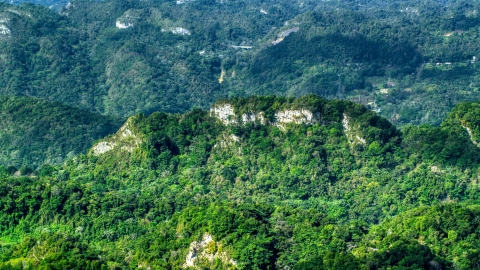 AX101_069.0000189F - Aerial stock photo of Limestone cliffs visible through jungle growth in the Karst Forest, Puerto Rico