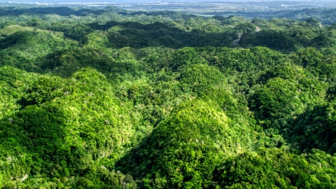 AX101_074.0000160F - Aerial stock photo of Green jungle covering karst mountains in the Karst Forest, Puerto Rico