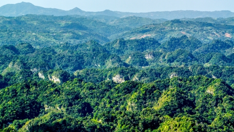 AX101_088.0000000F - Aerial stock photo of Limestone cliffs and lush green Karst Forest, Puerto Rico