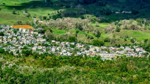 AX101_126.0000000F - Aerial stock photo of Small rural neighborhood nestled among trees Arecibo, Puerto Rico