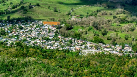 AX101_127.0000000F - Aerial stock photo of Small rural neighborhood surrounded by trees, Arecibo, Puerto Rico