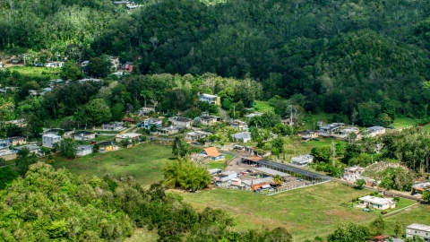 AX101_130.0000000F - Aerial stock photo of A group of rural homes surrounded by trees, Arecibo, Puerto Rico