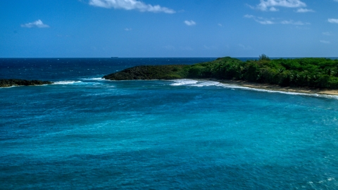 AX101_153.0000161F - Aerial stock photo of A deserted beach with trees in Arecibo, Puerto Rico