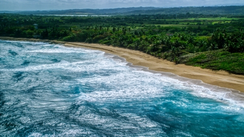 AX101_155.0000287F - Aerial stock photo of Beach and tree-lined coast in the Caribbean, Arecibo, Puerto Rico