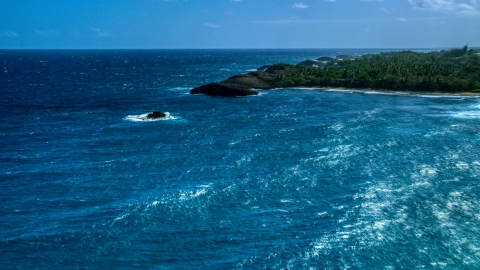 AX101_159.0000111F - Aerial stock photo of Clear blue water beside a tree-lined coast, Arecibo, Puerto Rico