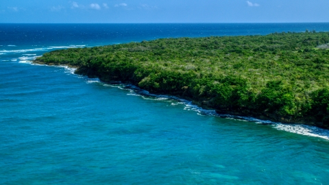 AX101_195.0000097F - Aerial stock photo of Stunning blue waters along a tree lined coast, Manati, Puerto Rico
