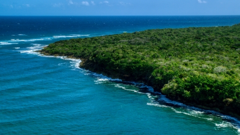 AX101_195.0000190F - Aerial stock photo of A tree-lined Caribbean coast, Manati, Puerto Rico