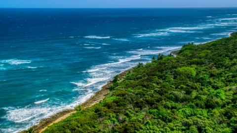 AX101_196.0000289F - Aerial stock photo of Waves rolling toward a tree lined coast, Manati, Puerto Rico