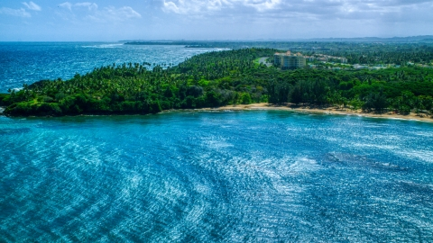 AX101_209.0000258F - Aerial stock photo of Palm trees and beach on a Caribbean island coast in Vega Alta, Puerto Rico
