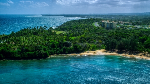 AX101_210.0000000F - Aerial stock photo of Palm tree covered Caribbean island beach in Vega Alta, Puerto Rico