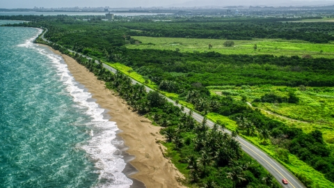 AX101_224.0000261F - Aerial stock photo of Beach and island highway with palm trees in the Caribbean, Dorado, Puerto Rico