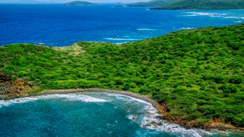 AX102_108.0000211F - Aerial stock photo of Tree covered Caribbean island coast of Culebra, Puerto Rico