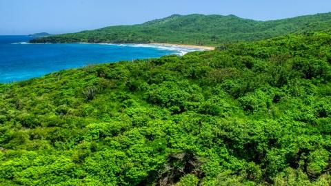 AX102_121.0000158F - Aerial stock photo of Coastal vegetation and sapphire blue waters, Culebra, Puerto Rico