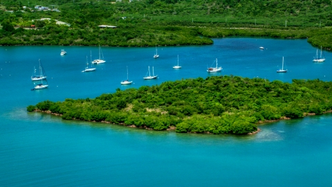 AX102_141.0000223F - Aerial stock photo of Group of sail boats in sapphire blue waters by tree covered coasts, Culebra, Puerto Rico