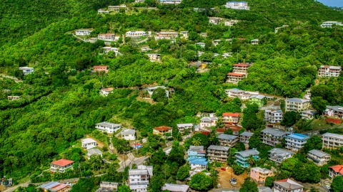 AX102_212.0000000F - Aerial stock photo of Upscale hillside homes nestled among trees, Charlotte Amalie, St. Thomas