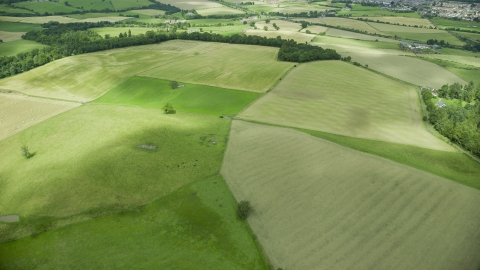 AX109_011.0000094F - Aerial stock photo of Green farm fields in Stirling, Scotland