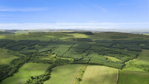 AX110_004.0000000F - Aerial stock photo of Forest near farmland, Banton, Scotland
