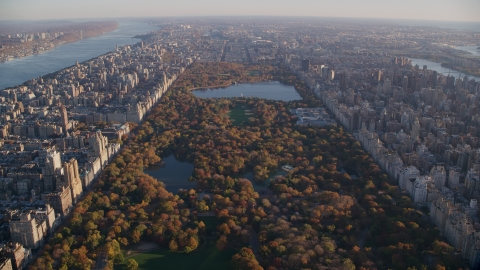 AX118_190.0000000F - Aerial stock photo of Central Park with autumn leaves at sunrise in New York City